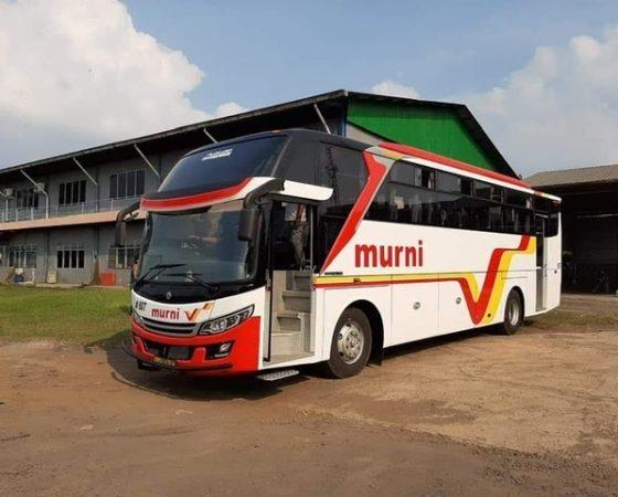 Grand Falcon Big Bus